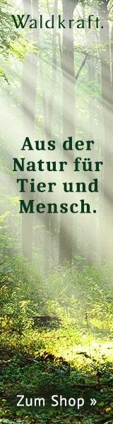 Waldkraft